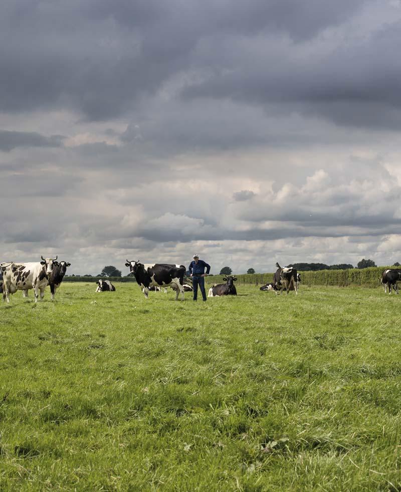 Oldest-Mueller-Tank-Dutch-Farmer-in-Field-WEB.jpg