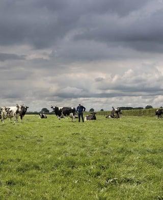 Croissance d'une ferme laitière
