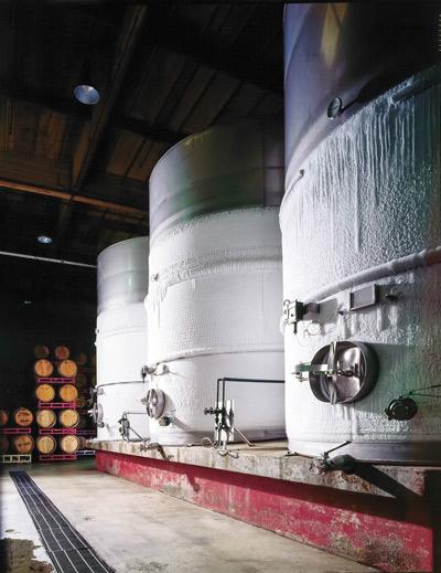 Wine Fermenters in a Cellar