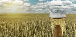 Energy Recovery a Brewery Solution