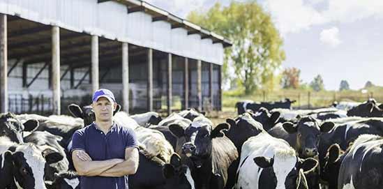 Robotic Farm Milk Cooling Solution