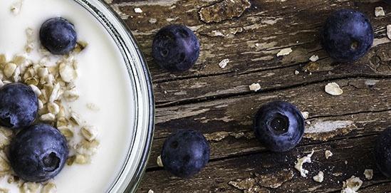 Yogurt Storage and Processing Solution